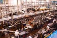 Praca przy produkcji spożywczej w Norwegii od zaraz