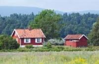 Szukamy oferty pracy w Norwegii od zaraz dla pary przy produkcji na magazynie itp.