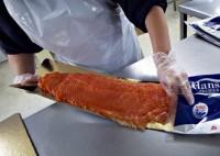 Filetowanie ryb praca w Norwegii w przetwórni 2014 – TYLKO DLA KOBIET