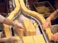Pakowanie-produkcja sera praca Norwegia bez znajomości języka Oslo 04.2014