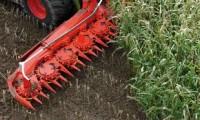 Rolnictwo – oferty sezonowej pracy w Norwegii na wakacje 2014