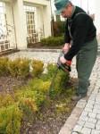 Dam sezonową pracę w Norwegii ogrodnik przy pielęgnacji zieleni Stavanger