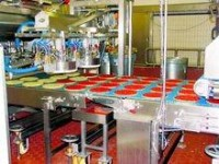 Praca w Norwegii przy produkcji spożywczej bez znajomości języka Stavanger