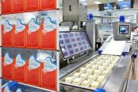 Oferty pracy w Norwegii przy pakowaniu sera od zaraz bez języka Sandefjord