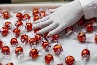 Bez języka oferta pracy w Norwegii pakowanie słodyczy od zaraz Oslo