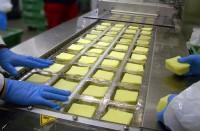 Oferta pracy w Norwegii bez znajomości języka pakowanie sera od zaraz Sandefjord