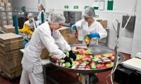Od zaraz praca w Norwegii przy pakowaniu żywności bez języka Stavanger 2018