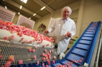 Stavanger dla par oferta pracy w Norwegii na produkcji słodyczy bez języka 2017