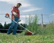 Ogrodnik – ogłoszenie fizycznej pracy w Norwegii od zaraz z językiem angielskim, Narwik