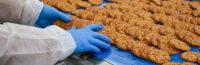Praca Norwegia bez znajomości języka przy pakowaniu ciastek od zaraz w Lillehammer 2020