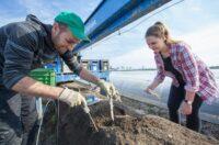 Sezonowa praca w Norwegii bez znajomości języka zbiory szparagów kwiecień 2021 Hoppestad