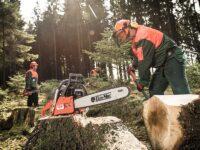 Norwegia praca sezonowa bez języka norweskiego w leśnictwie od października, Viken 2021